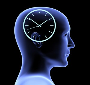 brain processing speed and MS