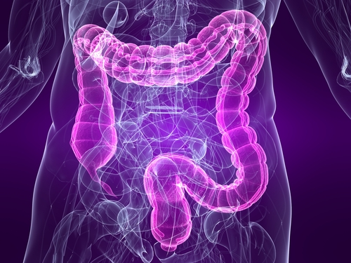 Gut Bacteria: Key to MS?