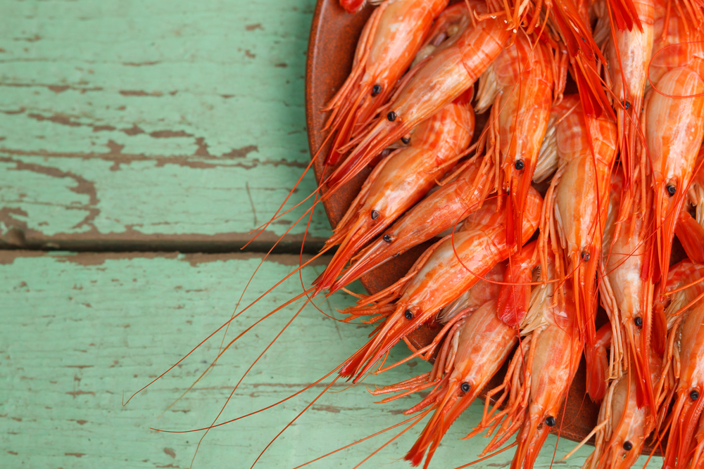 Likelihood of MS, Other Autoimmune Disorders in Women Increased By Mercury in Seafood According to Study