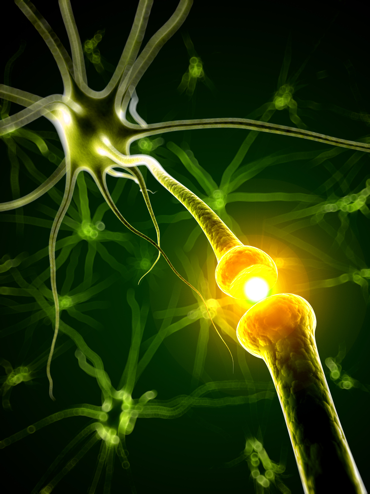 Fingolimod (Gilenya) Found to Be an Effective Multiple Sclerosis Therapy for Up to Three Years of Treatment