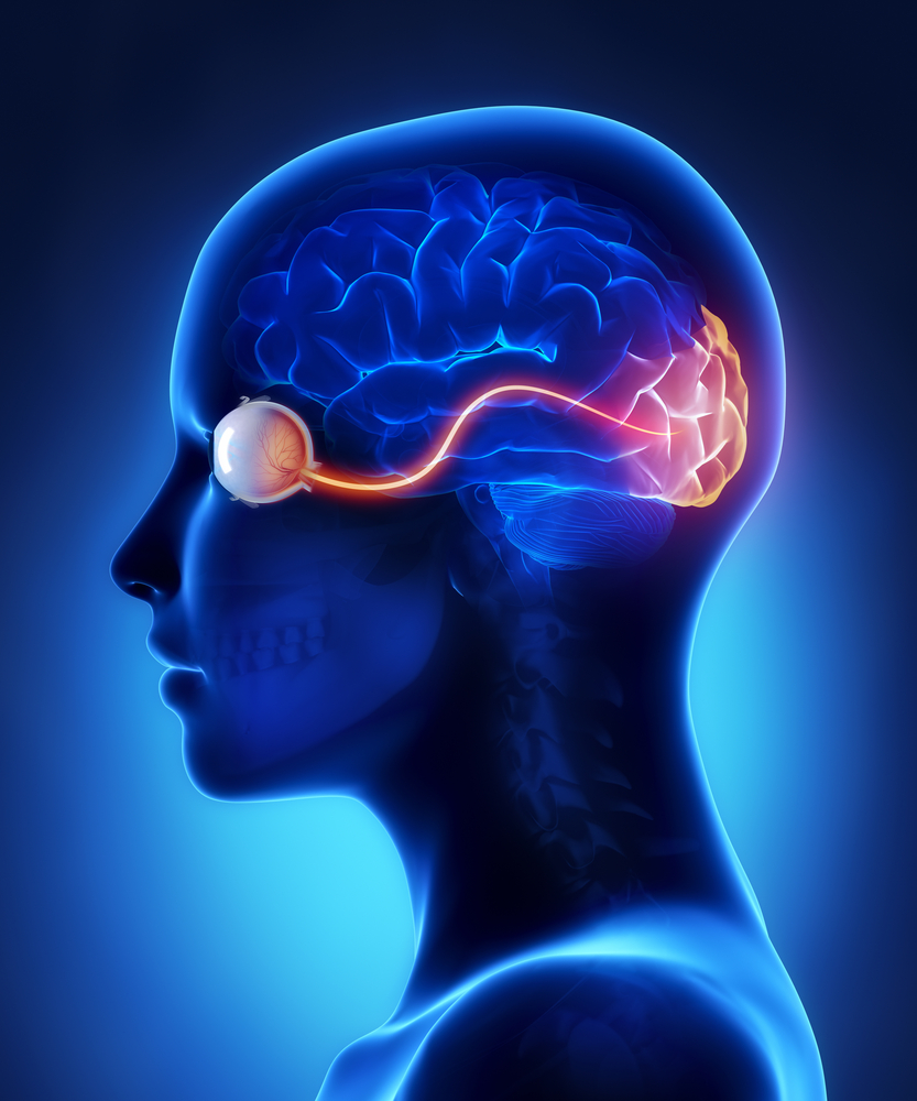 acute optic neuritis and MS