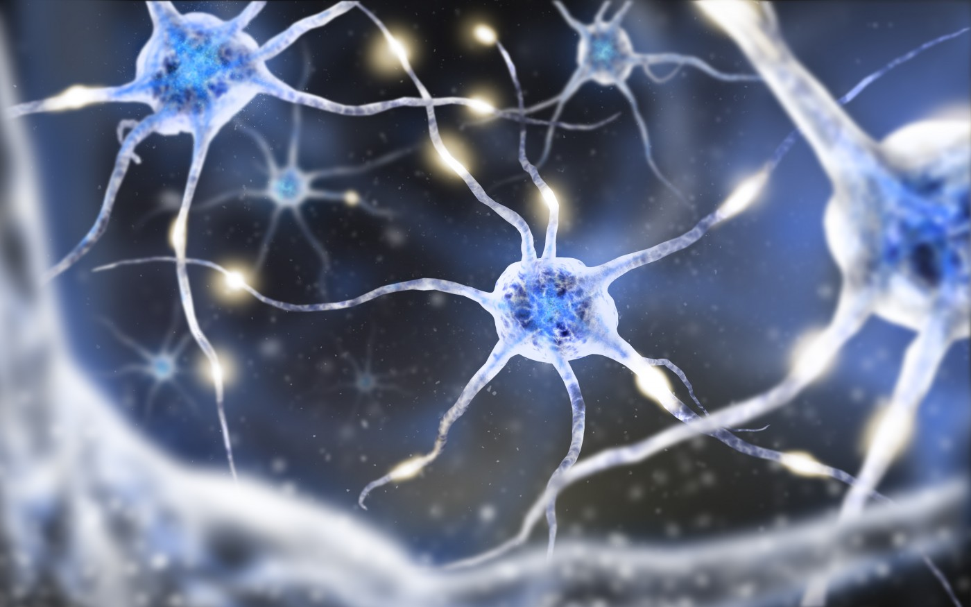 New Brain Cell Interaction Study Technique Could Impact MS Research