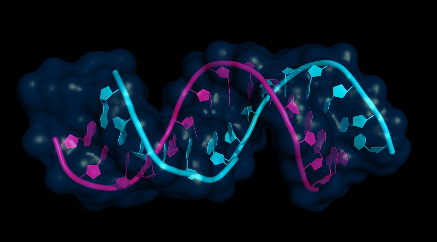 microRNAs and multiple sclerosis