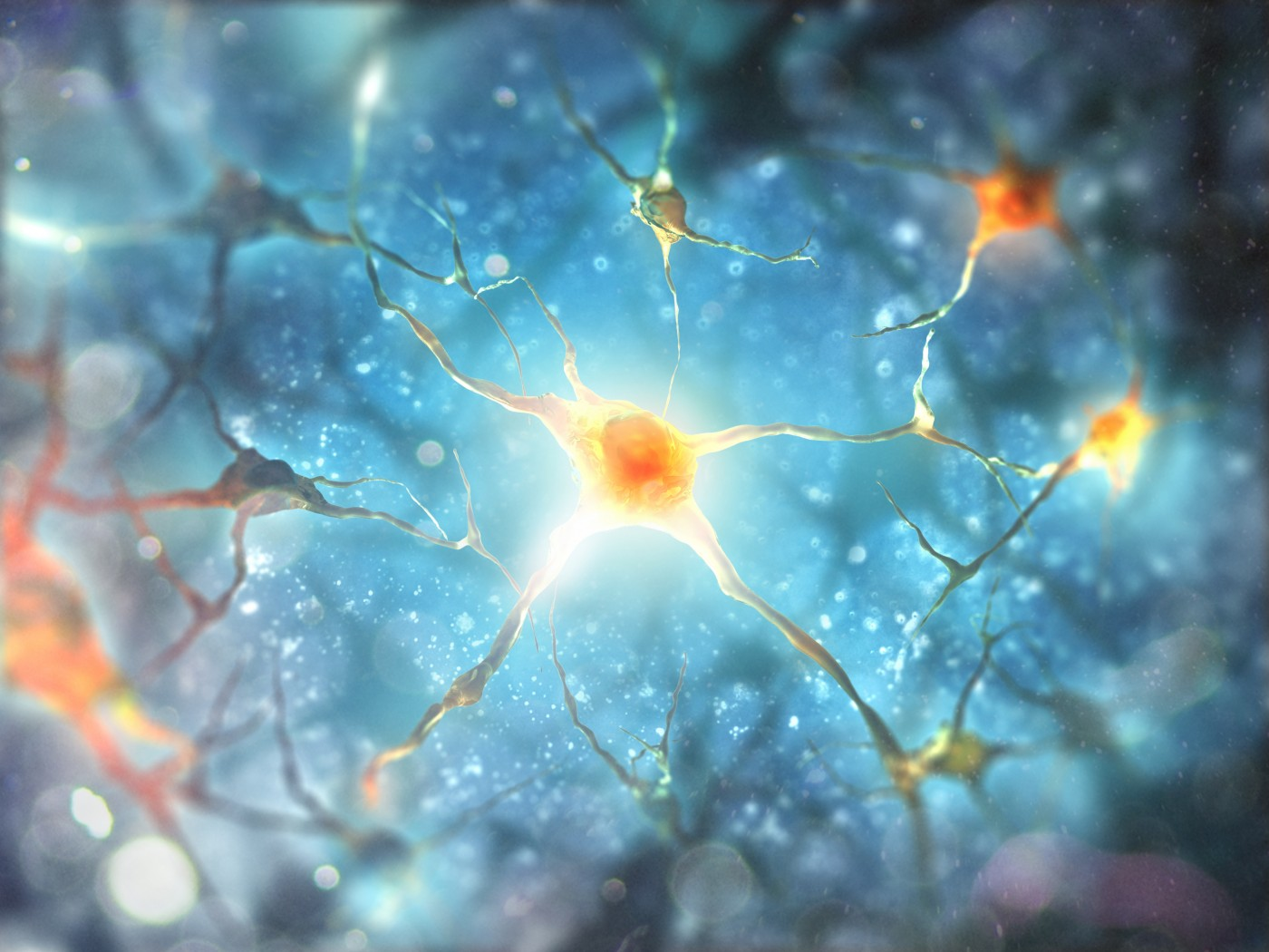 Multiple sclerosis study