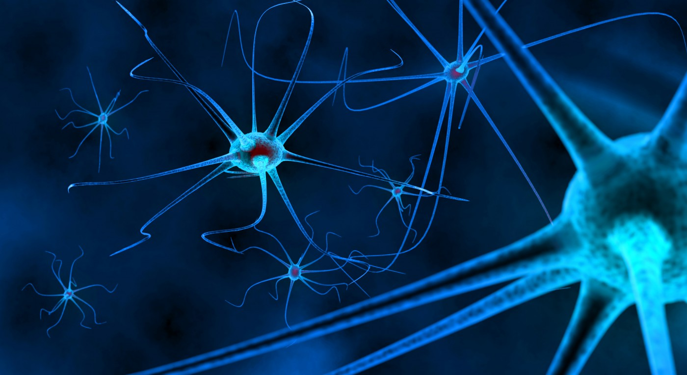 synapses and multiple sclerosis