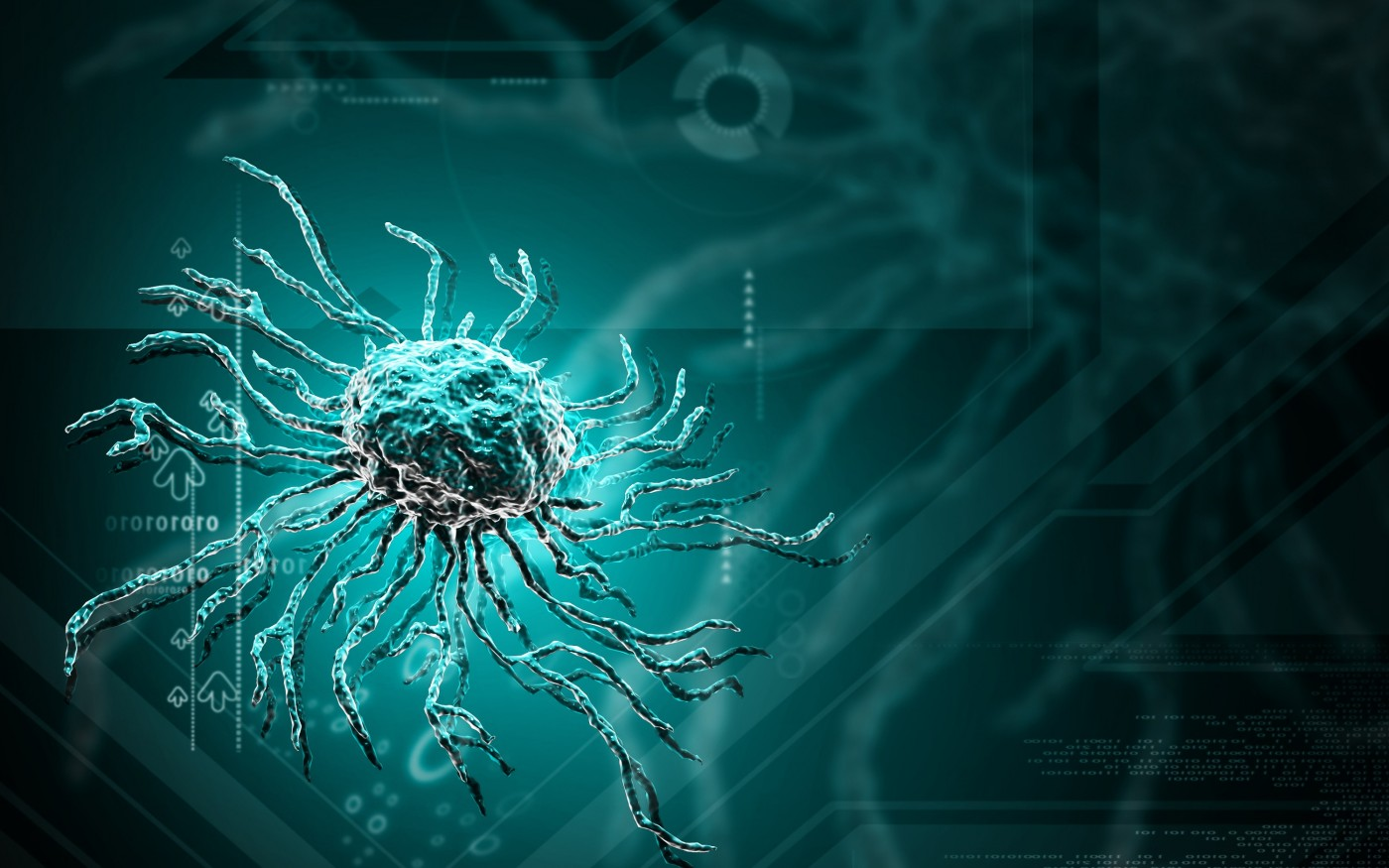 HSCT and MS