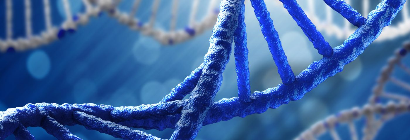 Variants of Gene Linked to MS, ANKRD55, Found in Immune Cells Associated with Disease