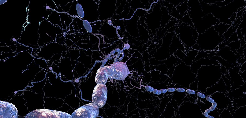 Fingolimod (Gilenya) Seen to Promote Peripheral Nerve Regeneration in Mice, Aiding Remyelination
