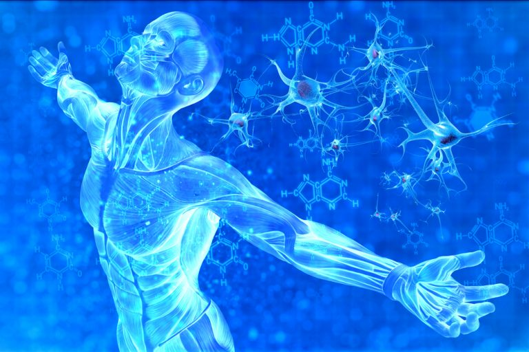 Antioxidant approaches to MS