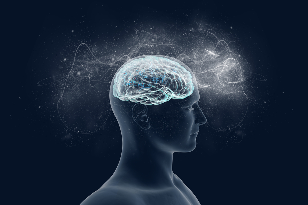 cognitive function and MS
