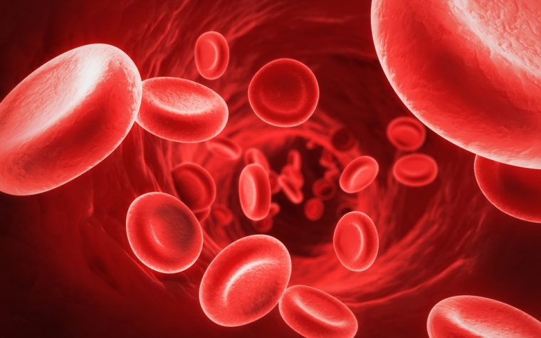 blood biomarkers of MS
