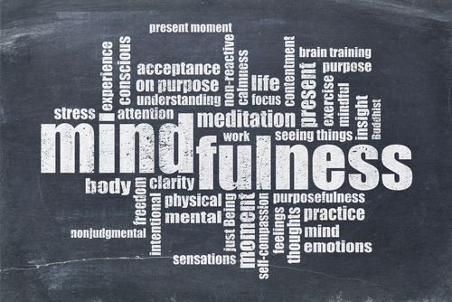 mindfulness training, mindset