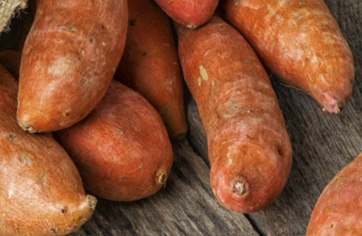 Nutrition for MS: Sweet Potatoes