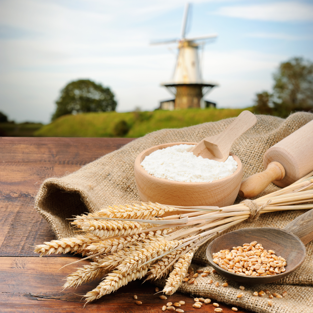 wheat proteins and inflammation
