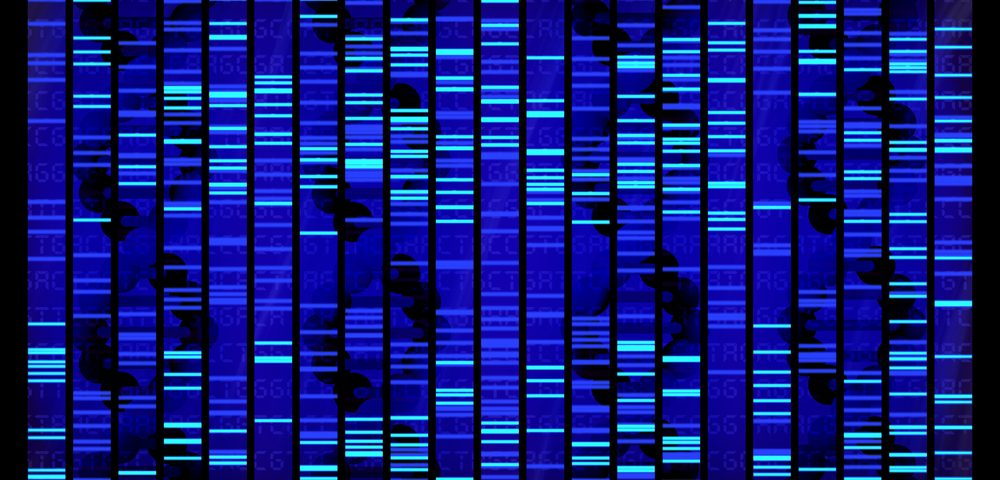 Genome-wide Analysis Pinpoints 200 Gene Variants Common to MS