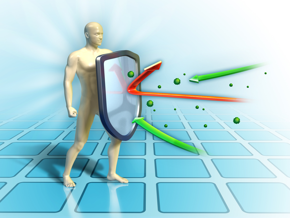 immune system and stem cells