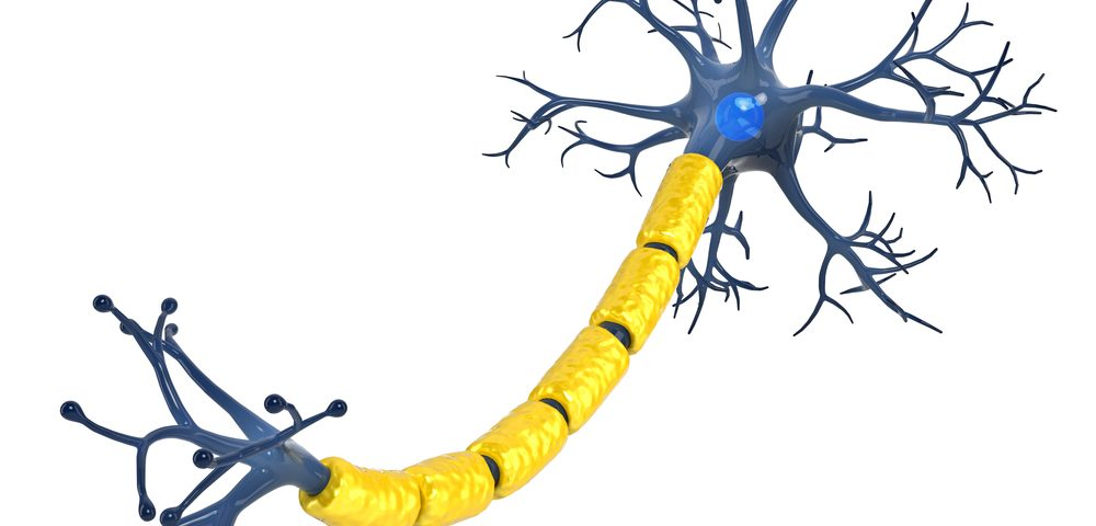 NIH Grant to Support Research into Role of Copper in Demyelination