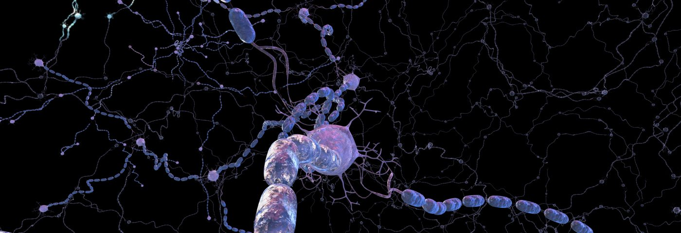 Discovery of Calcium Channel Crucial to Myelin Formation May Provide New MS-treatment Leads