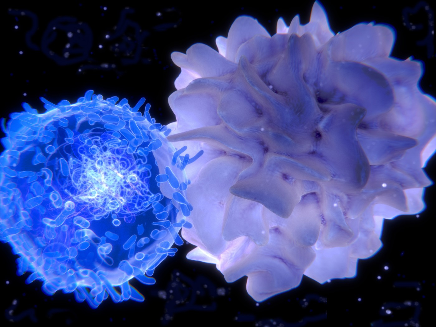 Activated T-cells