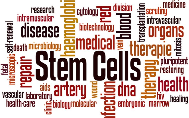 stem cells and cures act