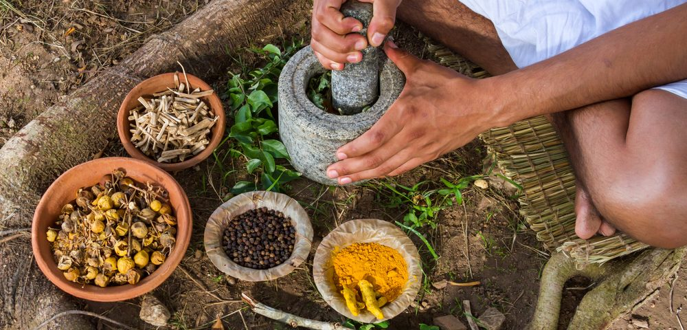 Component of Traditional Medicinal Herb Improves Symptoms in MS Mouse Model, Study Shows