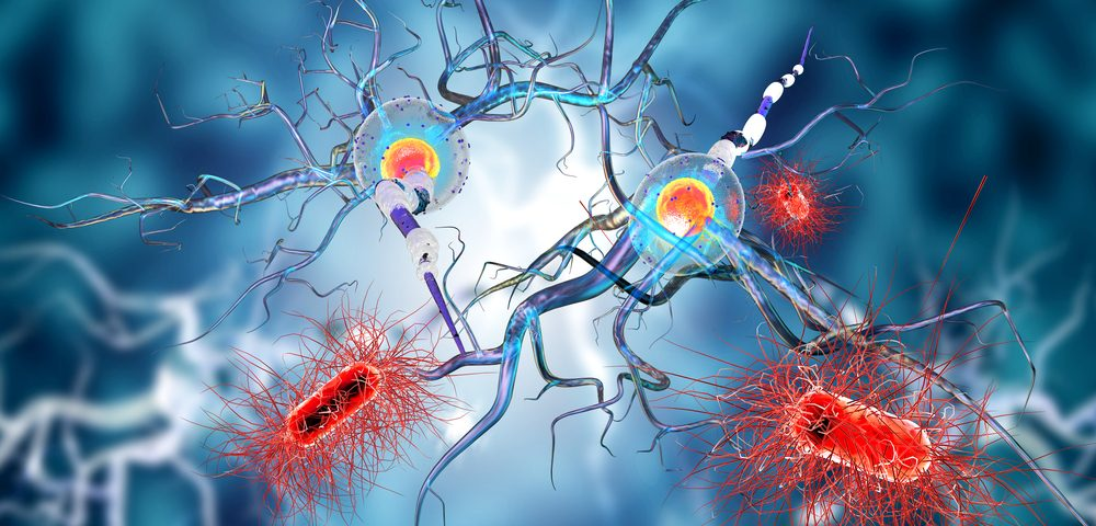 How the Blood Brain Barrier May Thwart MS Progression