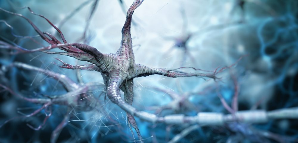 Fungal Compound Boosts Axon Regeneration, Offering Clue for MS Treatment