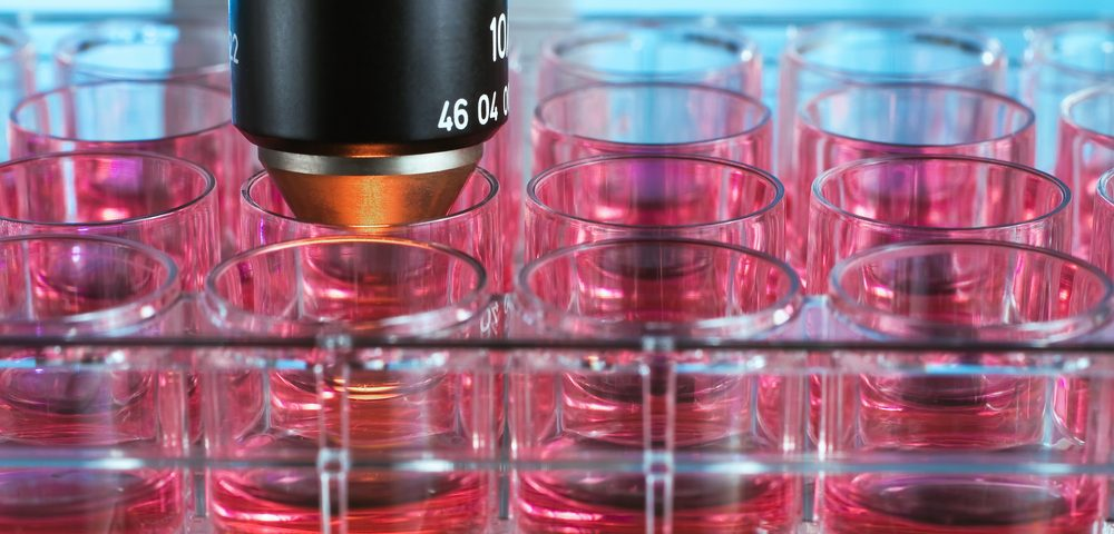 3D Laboratory Cell Growth System Should Speed Up MS Remyelination Research