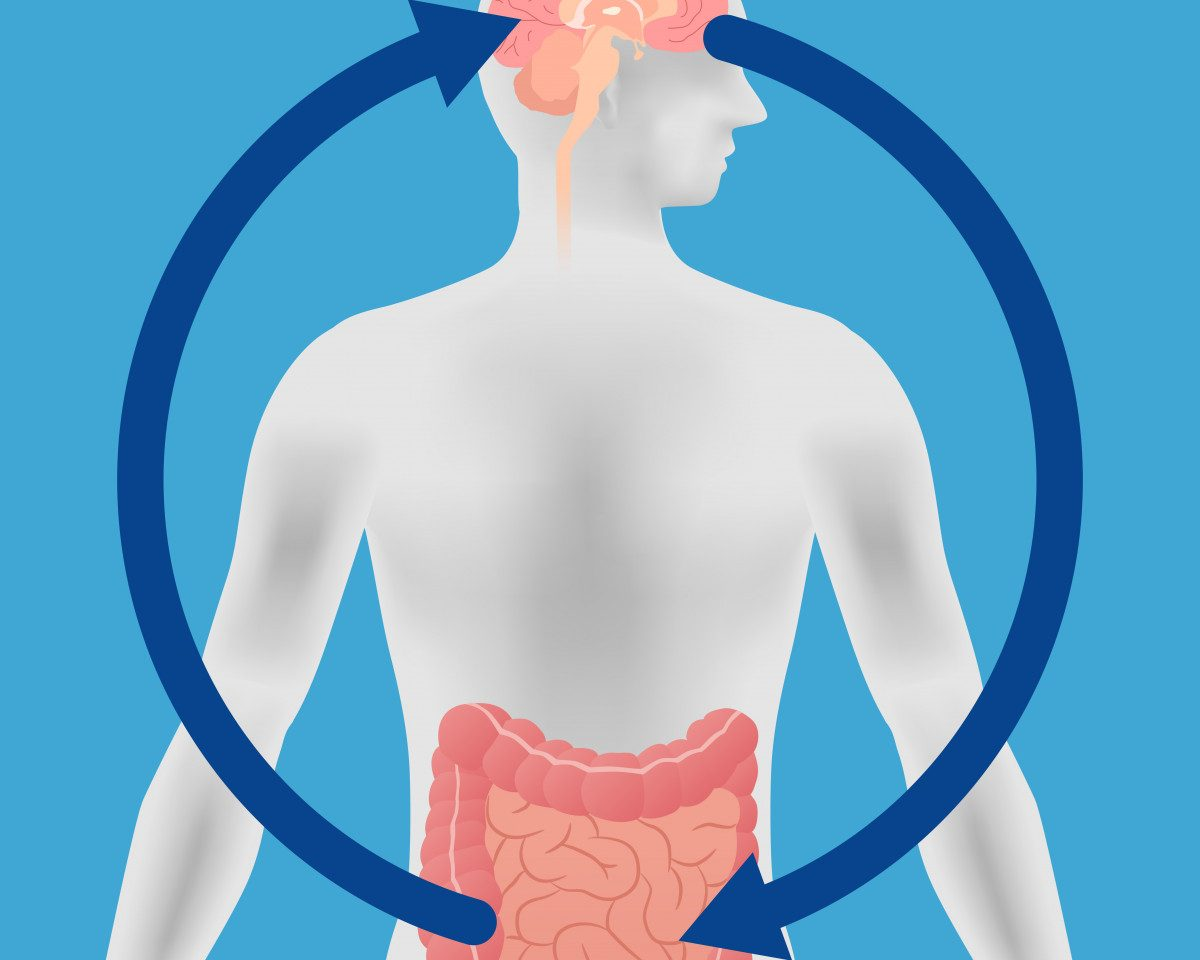 University of California at San Francisco Recruiting MS Patients for Gut Bacteria Study