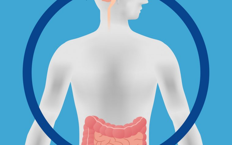 MS gut bacteria study