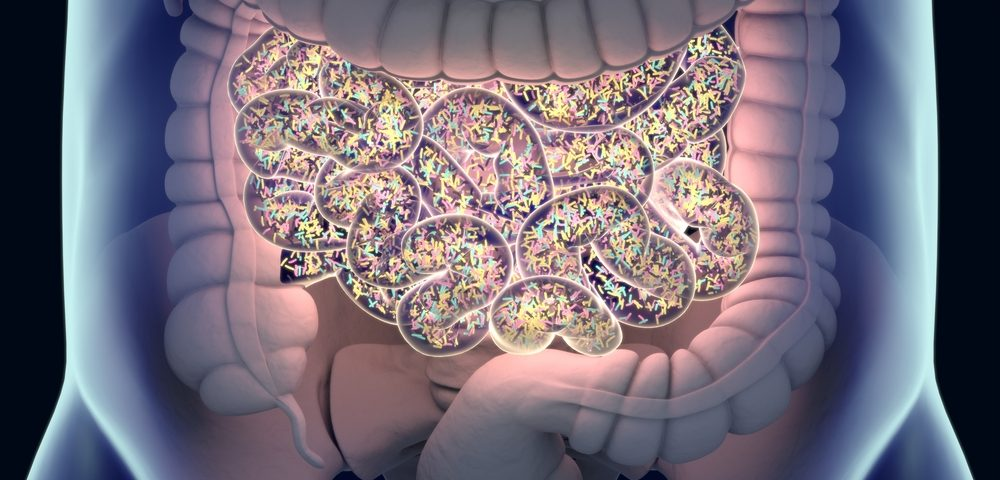 One More Small Piece of the Puzzle on the Role of Gut Micro-organisms in MS