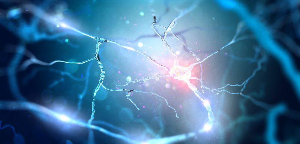 Thin But Persistent Regrowth of Myelin Layers Sign of Health in CNS, Study Says