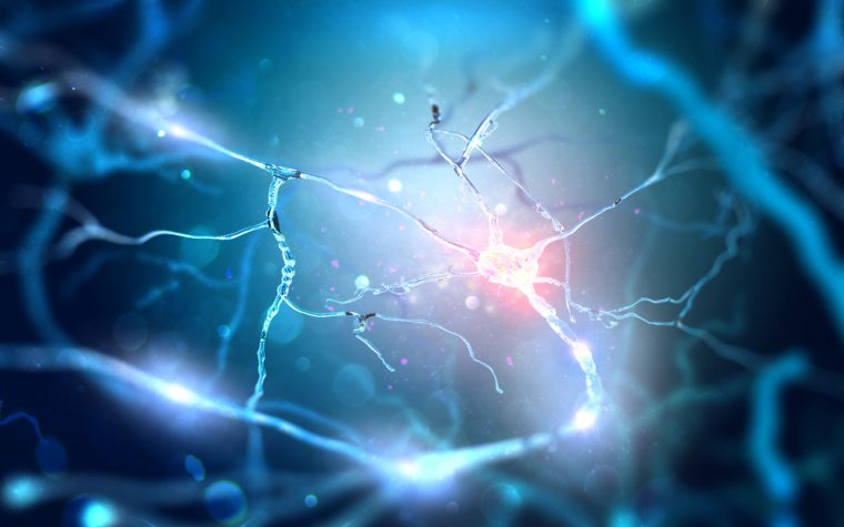 Disarm Therapeutics to Begin Developing Therapy that Prevents Axonal Degeneration