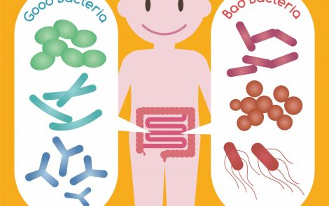 Gut Bacteria Contribute to MS Onset and Development, Rutgers Mouse Study Shows