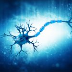 remyelination Convelo Genentech collaboration