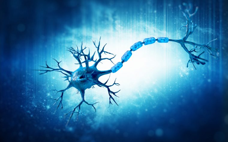 remyelination and M3R receptors