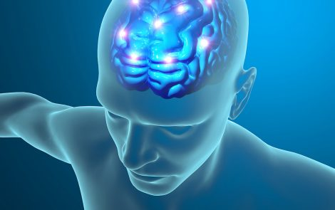Lymphatic Vessels of Brain Carry Messages That Appear to Promote MS, Study Reports