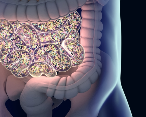 Protein Produced by Common Gut Bacteria Can Trigger Autoimmunity, Study Suggests