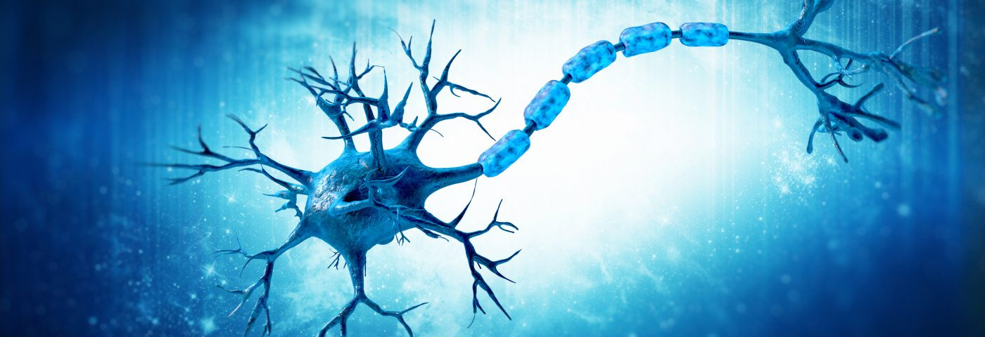 Blocking Protein Called SARM1 Seen to Protect Nerve Cells from Damage Linked to MS