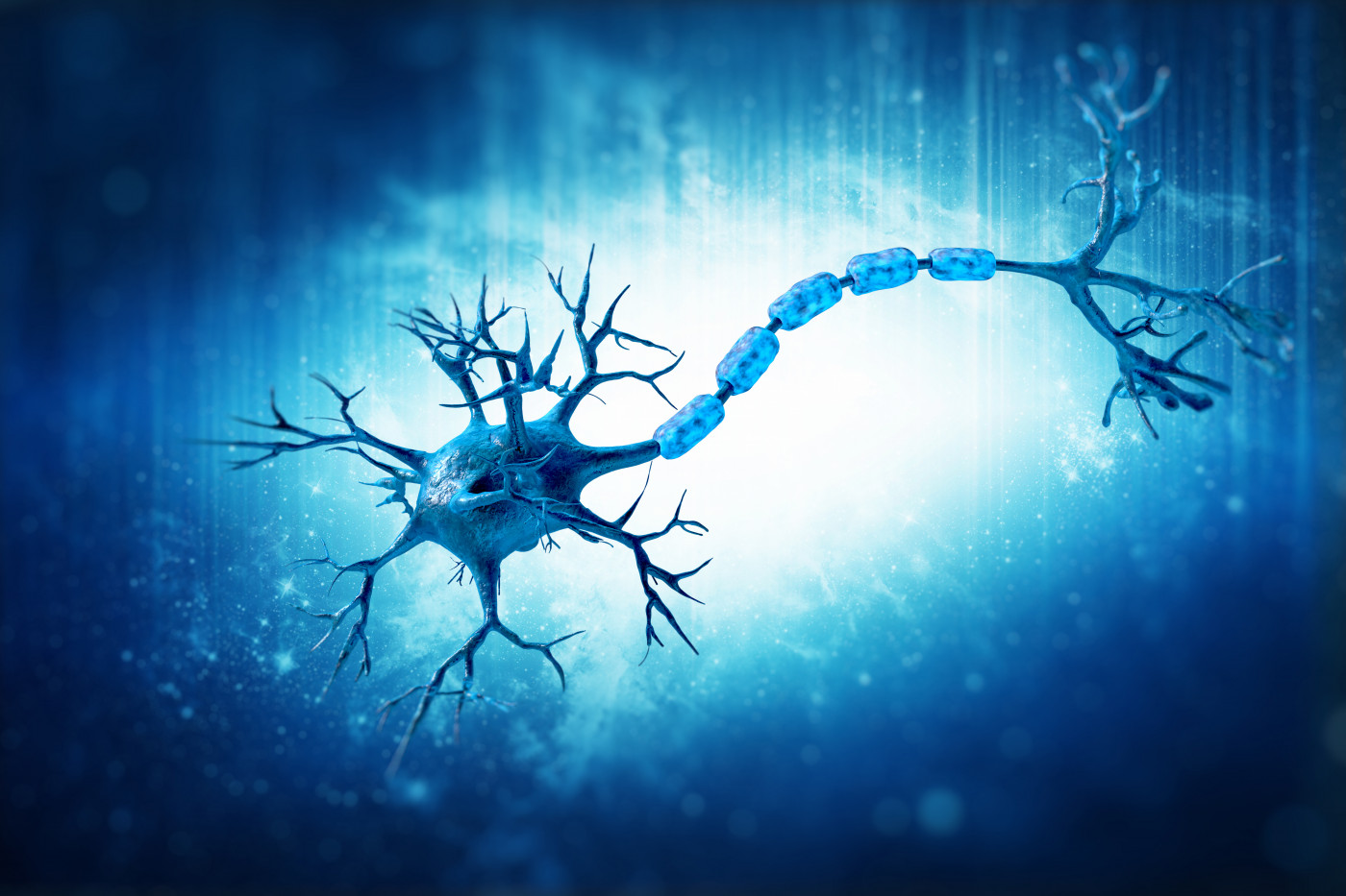 SARM1 and nerve cells