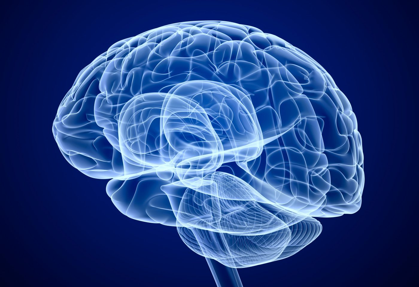 Decline in Brain Volume Driven by Gray Matter Atrophy in MS Patients Despite Tysabri Treatment