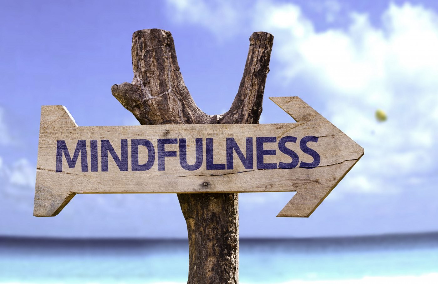 Mindfulness: Putting Mind Over MS