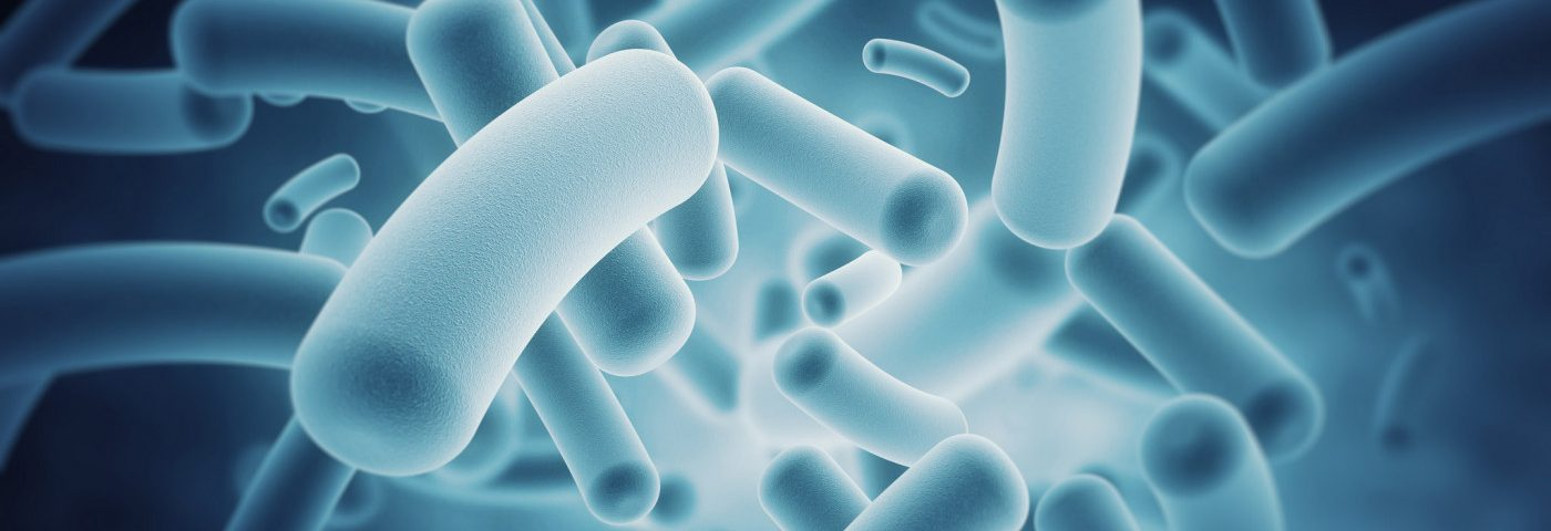 Early-life Antibiotic Use Disrupts Gut Microbiota and Immune System, MS Rat Study Finds