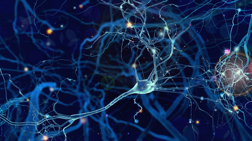 Ability to 'Create' Astrocytes Supports Their Damaging Role in MS, Like Diseases