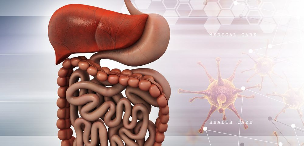 Gut Immune Cells That Travel to Brain May Help Resolve MS Disease Relapses