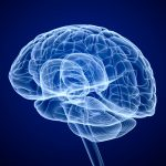 #ACTRIMS2021 - Young CSF Brain Fluid Rejuvenates Memory in MS Mice