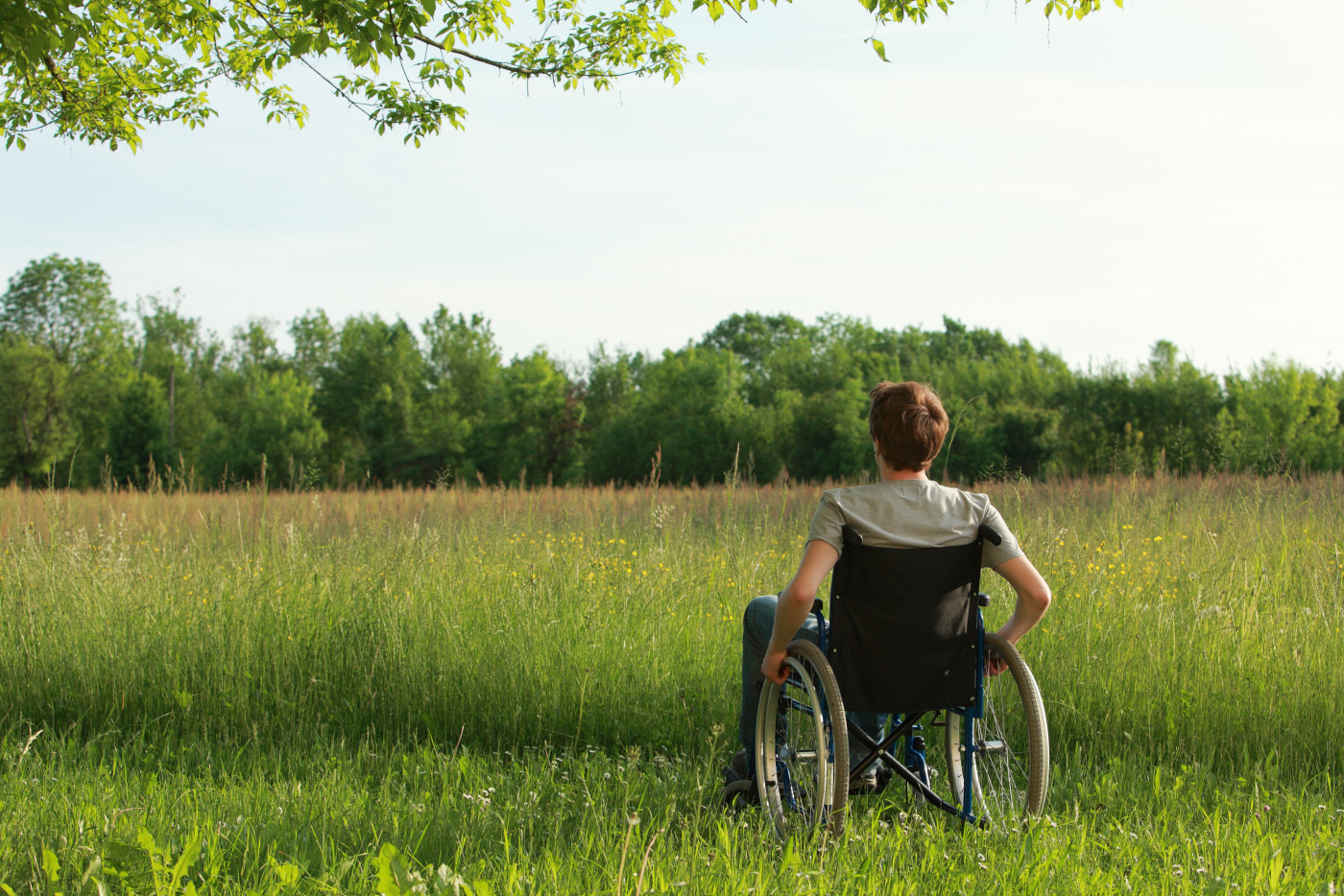 Ocrevus and PPMS disability