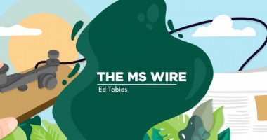 antibody, The MS Wire