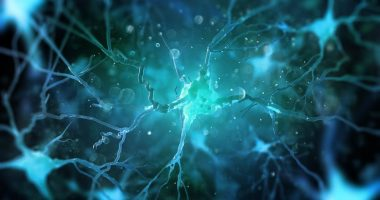 Temelimab and trial results/Multiple Sclerosis News Today/neurons and MS